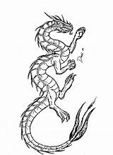 Dragon Coloring Printable Pages Tattoo Adult Portrait Adults Dragons Detailed Colouring Para Colorear Drawing Wingless Fantasy Pattern Books Drawings sketch template