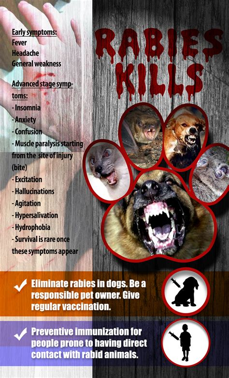 march  rabies awareness month people consulting