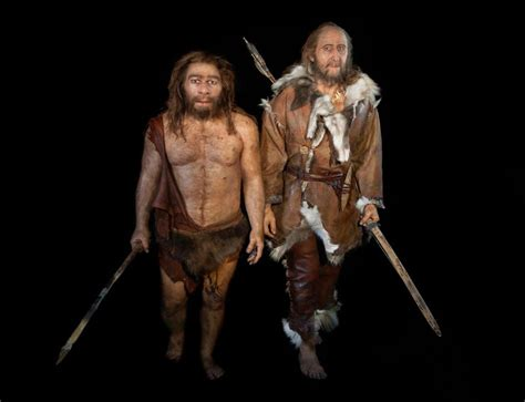 thoroughly modern humans interbred with neanderthals new scientist
