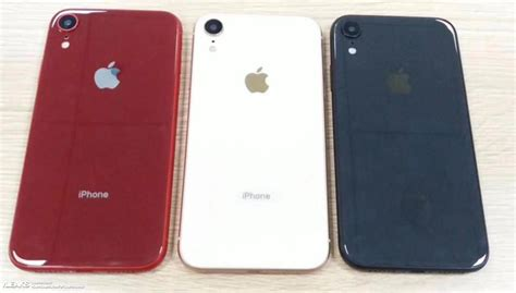 new leak says apple will launch iphone xc iphone xs and