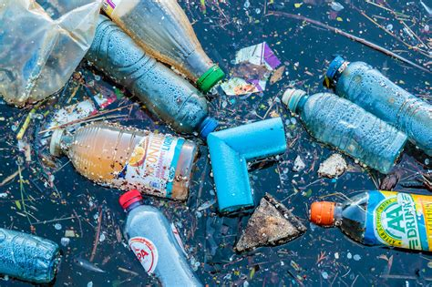 7 Sad Facts About Plastic Pollution (that Are Unfortunately True Custom Plastic Tanks Party Bags Wholesale Pallet Corner Protectors Inside Window Shutters Greenberg Surgery Shelf Clips Wall Greensboro
