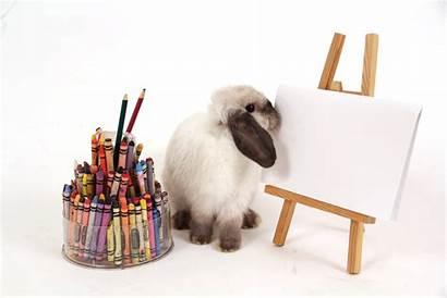 Crayons Cray Crayon Step Visual Class Smart