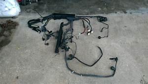 1995 Bmw M3 S50 Wiring Harness