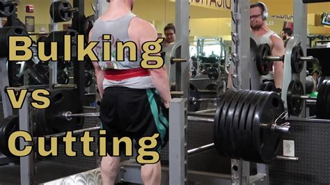 best bulking workouts workout plan for bulking and cutting eoua