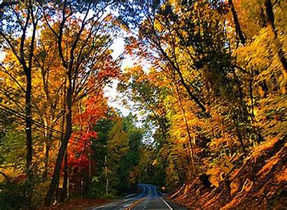 Fall Foliage Pennsylvania Pennlive Road Trips Colors