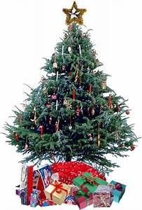 presents under the christmas tree clipart - Clipground