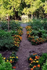 The Garden Roof Coop Kitchen Garden 2012 Garlic And