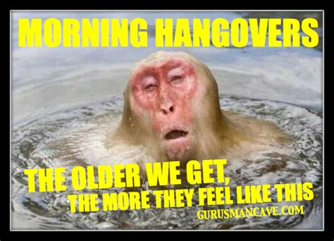 Funny Hangover Memes - funny meme photos