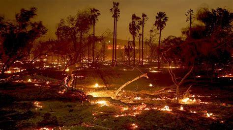 pure devastation    dead  firefighters