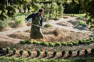 Mulchen Mit Grasschnitt : mulchen gartenzauber ~ Lizthompson.info Haus und Dekorationen