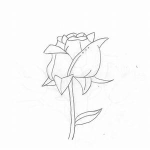 Simple Rose Sketch | Flickr - Photo Sharing!