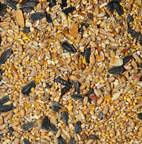 wild bird seed mixes bird feast twootz com