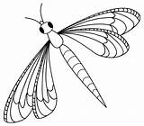 Coloring Insect Flying sketch template
