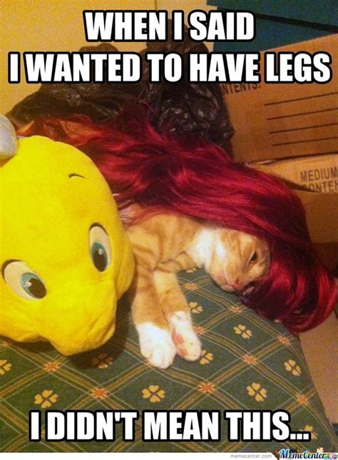 Little Mermaid Memes - little mermaid memes image memes at relatably com