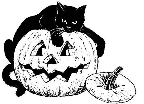malvorlage schwarze katze auf kuerbis ausmalbild