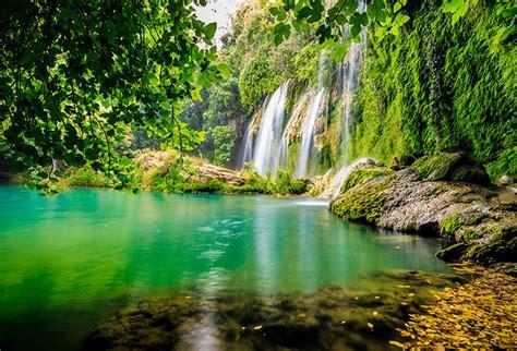 shop waterfall   forest wallpaper  nature
