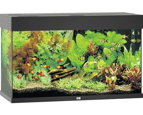 juwel 125 mit unterschrank aquarium juwel 125 mit led beleuchtung pumpe filter heizer ohne unterschrank schwarz