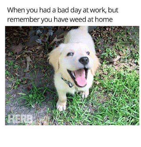 Bad Day At Work Meme - 25 best memes about at work at work memes