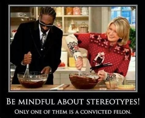 snoop dogg  martha stewart jokeitupcom