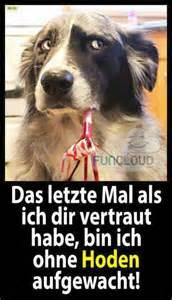sprüche für bilder hund beißt mann halb tot kostenlose lustige bilder für whatsapp profilbilder sprüche