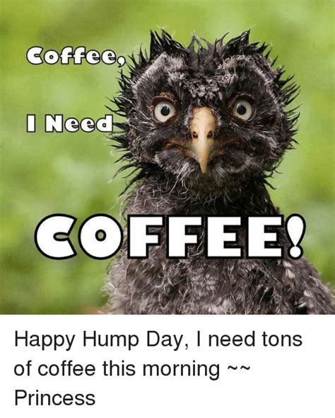 The best memes from instagram, facebook, vine, and twitter about afternoon coffee. Coffee I Need COFFEE? Happy Hump Day I Need Tons of Coffee This Morning ~~ Princess | Hump Day ...