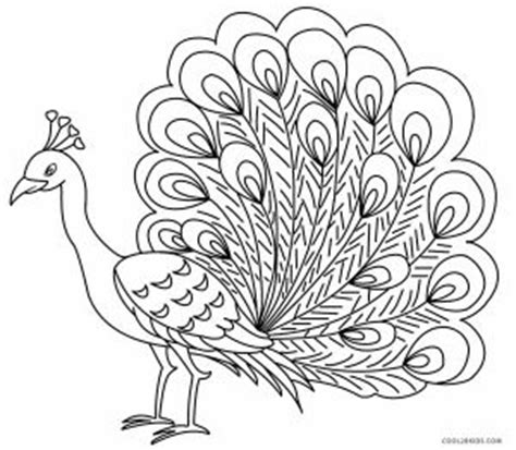 printable peacock coloring pages  kids coolbkids