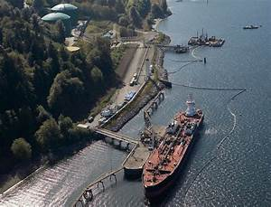 Review of Trans Mountain pipeline as opposition mounts