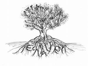 Tree With Roots Images - Reverse Search