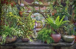 Feng Shui Garten Pflanzen : feng shui im garten und auf dem balkon everyday feng shui ~ Bigdaddyawards.com Haus und Dekorationen