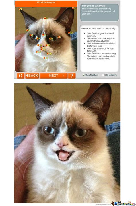 Grumpy Cat Is Happy For Once By Tomturc35  Meme Center