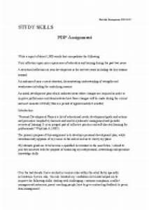 My Career Plan Essay English Argumentative Essay Topics My Future