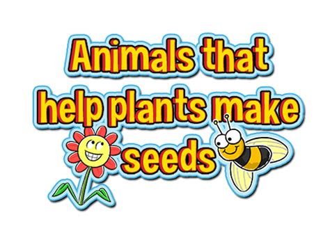 how do animals help animals that help plants make seeds the buddy system issue 3 finding stuff out e zine