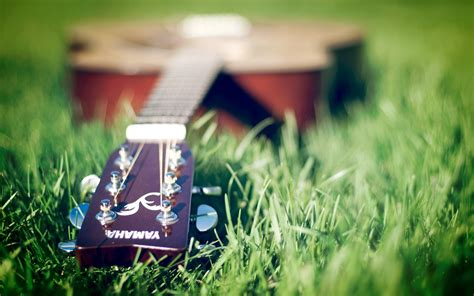 摇滚乐器吉他唯美高清桌面壁纸第二辑-广告壁纸-壁纸下载-美桌网