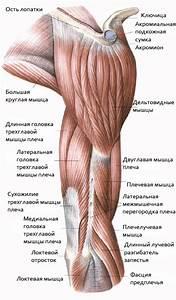 Постоянная боль в мышцах и суставах