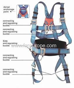 Fall Arrest Full Body Harness From China Manufacturer