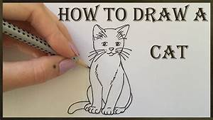 Cat Drawing - How To Draw A Cat