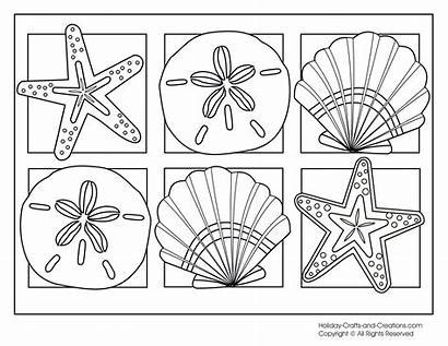 Coloring Seashells Pages Popular