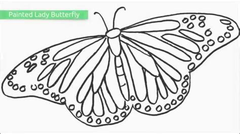 top   printable butterfly coloring pages youtube