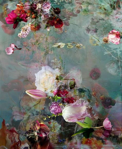 isabelle menin sinking  floral  life