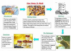 Explanation Texts  Flow Charts  Planning By Taw2704 - Teaching Resources