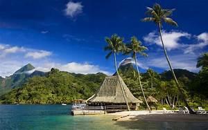 Moorea Tahiti tropics tropics beach cafe tahiti Beach PA