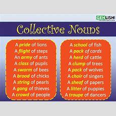 Collective Nouns  Free English Tutorials