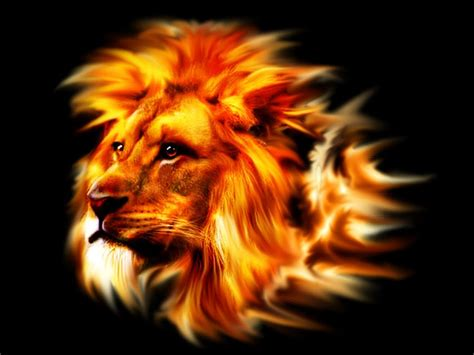 Speed Art : Lion Flaming Gimp - YouTube