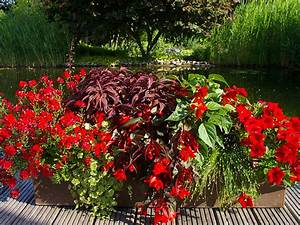 terrassen gestaltung zum verlieben in rot With französischer balkon mit sommerblumen für den garten