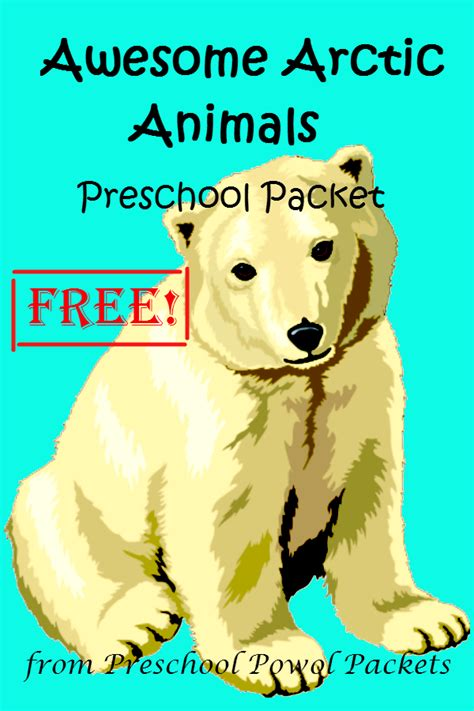 free awesome arctic animals preschool packet 857 | awesome arctic animals prek cover