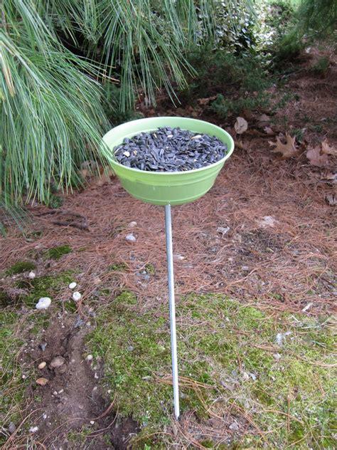 bird feeders homemade bird feeders