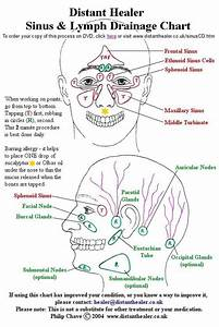 The Distant Healer Sinus And Lymph Drainage Chart  Click