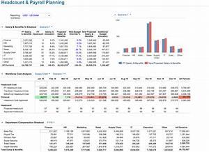 Wonderful workforce planning template photos wordpress for Workforce plan template example