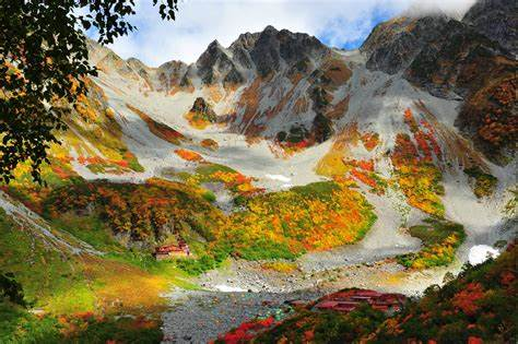 nature, Landscape, Trees, Grass, Fall, Colorful, China ...