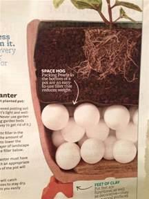 Garden Pot Filler by Anatomy Of A Planter Landscape And Garden Pinterest